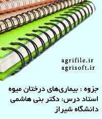 جزوه بیماريهای درختان میوه ـ دکتر رضايي دانش و دکتر بني هاشمي (دانشگاه شيراز)