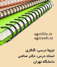 جزوه گلکاری ـ دکتر صالحي (دانشگاه شيراز)