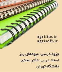 جزوه ميوه هاي دانه ريز ـ دكتر عبادي (دانشگاه تهران)